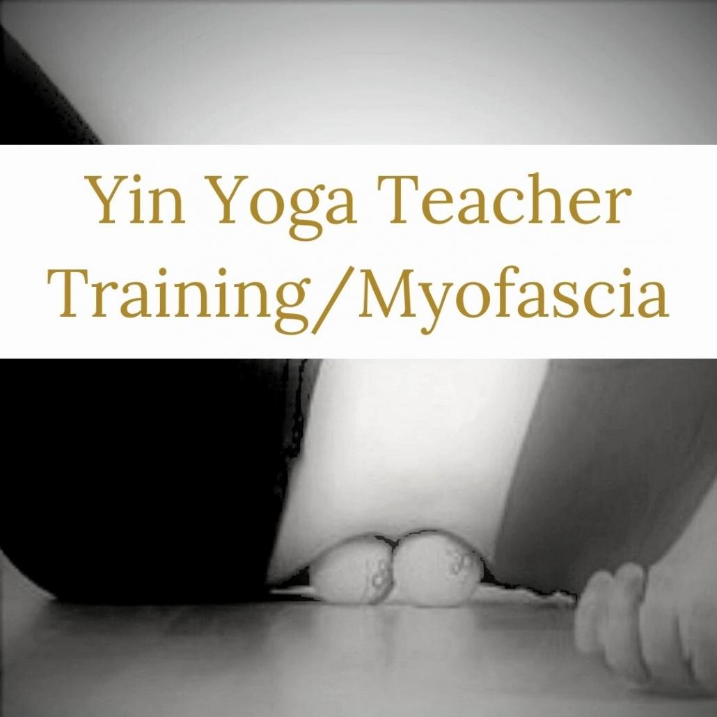 yin yoga teacher training akirayoga.com