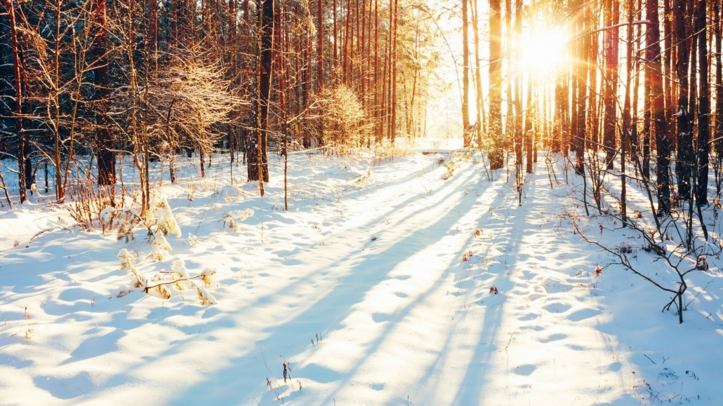 Yin Yoga for winter