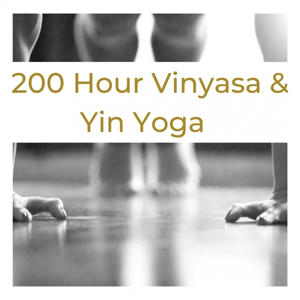 200 hour vinyasa and Yin Yoga Teacher training bali
