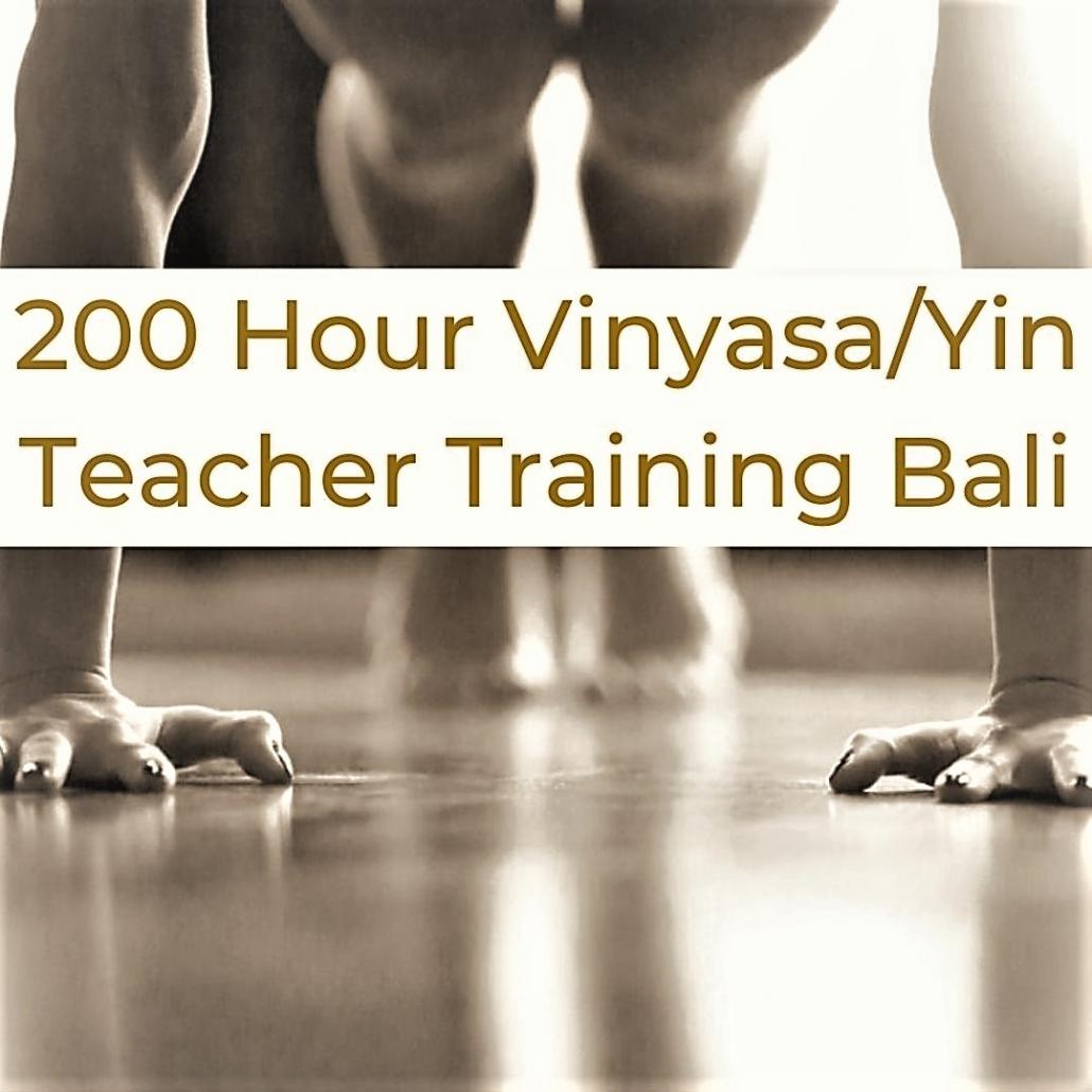 200 hour vinyasa yin yoga teacher training bali